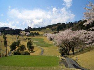 太平洋クラブ相模コース コース写真2