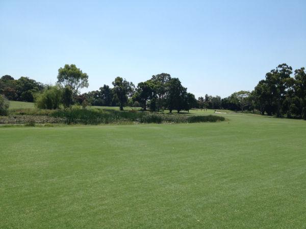 ゴルフ場写真4