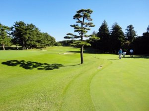 鶴舞カントリー倶楽部 (鶴舞CC) ゴルフ会員権ガイド 千葉県