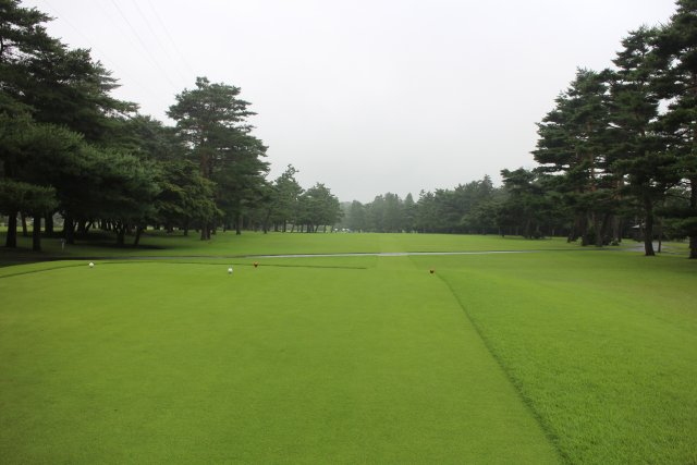 ゴルフ クラブ 武蔵