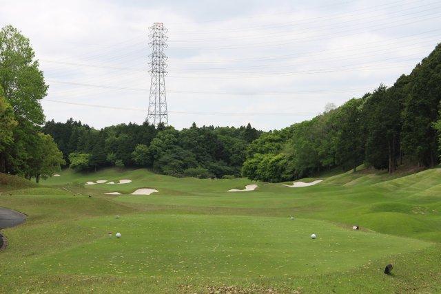 ゴルフ クラブ カレドニアン